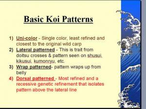 basicpatterns